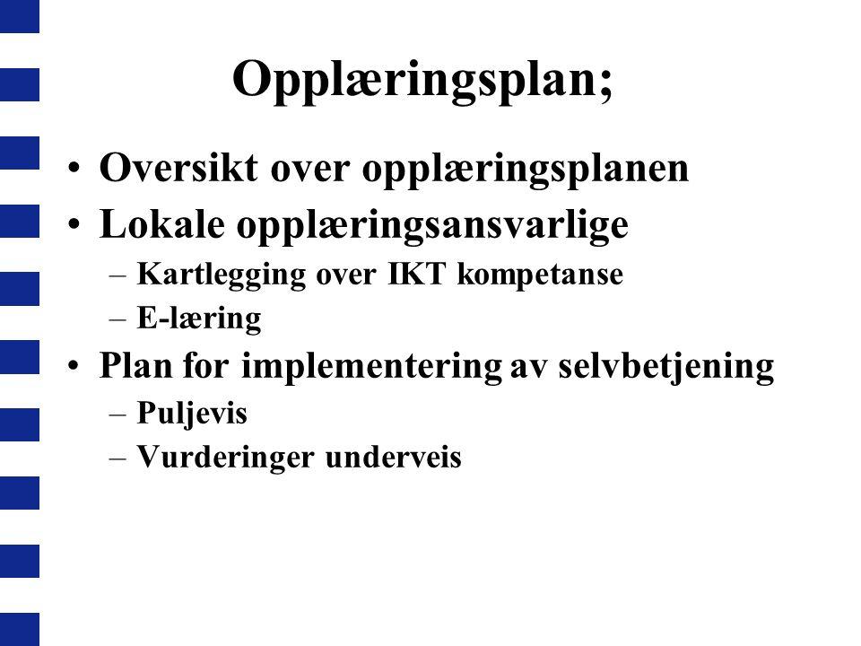 Opplæringsplan; Oversikt over opplæringsplanen Lokale opplæringsansvarlige –Kartlegging over IKT kompetanse –E-læring Plan for implementering av selvb