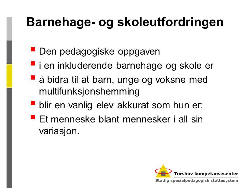 Barnehage- og skoleutfordringen  Den pedagogiske oppgaven  i en inkluderende barnehage og skole er  å bidra til at barn, unge og voksne med multifu