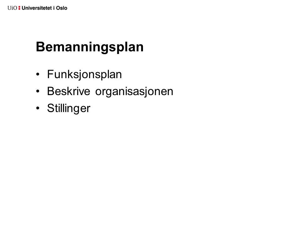 Bemanningsplan Funksjonsplan Beskrive organisasjonen Stillinger