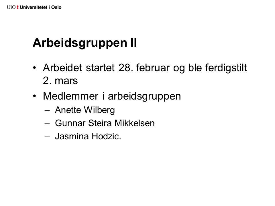 Arbeidsgruppen II Arbeidet startet 28. februar og ble ferdigstilt 2. mars Medlemmer i arbeidsgruppen –Anette Wilberg –Gunnar Steira Mikkelsen –Jasmina