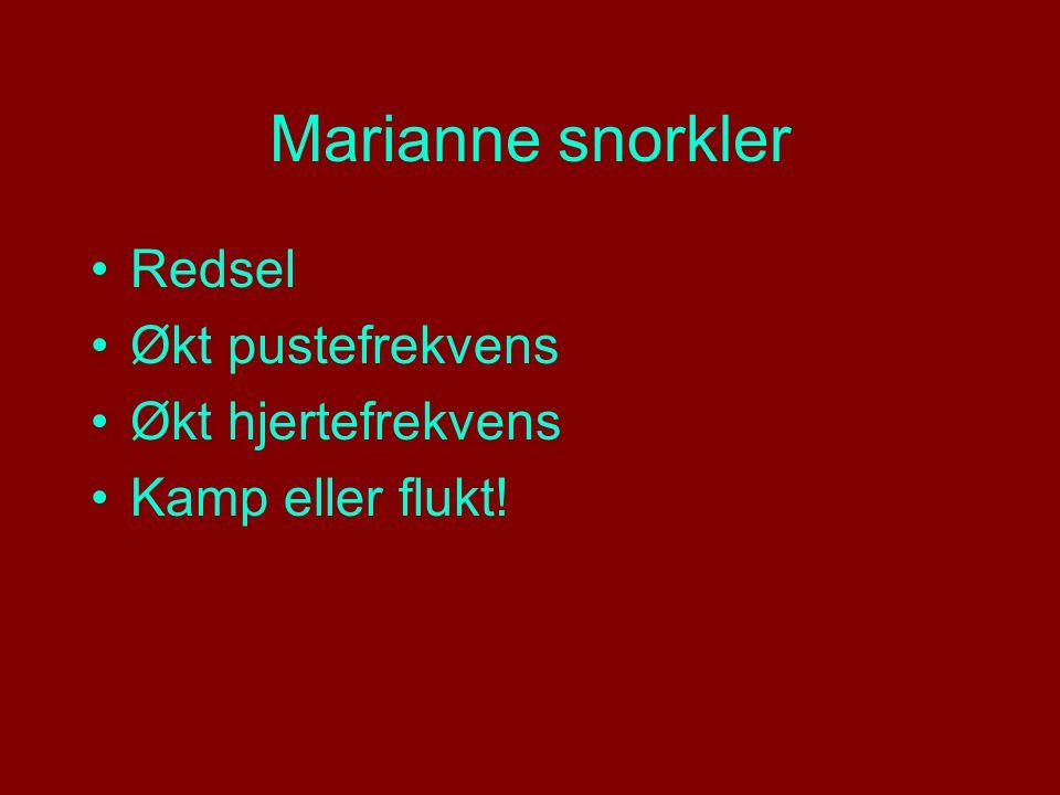 Marianne snorkler Redsel Økt pustefrekvens Økt hjertefrekvens Kamp eller flukt!