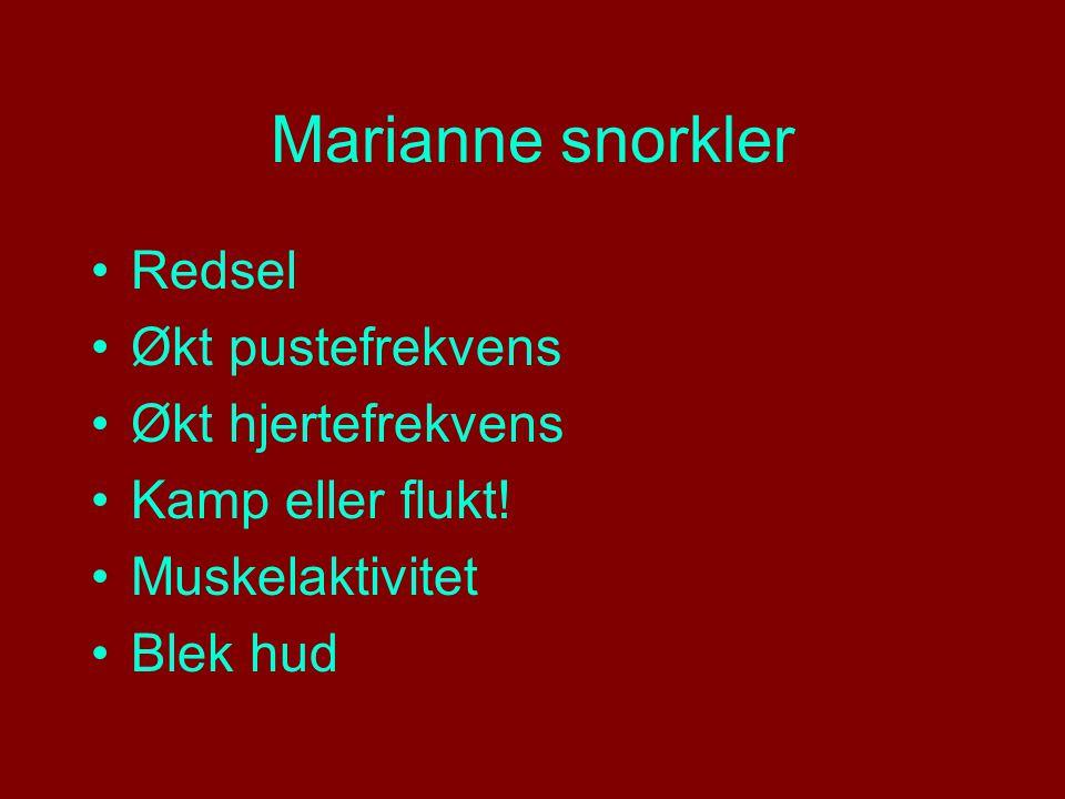 Marianne snorkler Redsel Økt pustefrekvens Økt hjertefrekvens Kamp eller flukt.