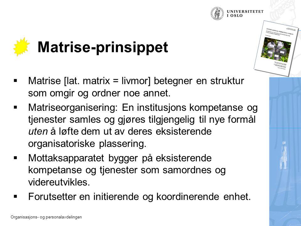 Organisasjons- og personalavdelingen Matrise-prinsippet  Matrise [lat. matrix = livmor] betegner en struktur som omgir og ordner noe annet.  Matrise