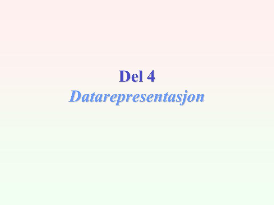 Del 4 Datarepresentasjon