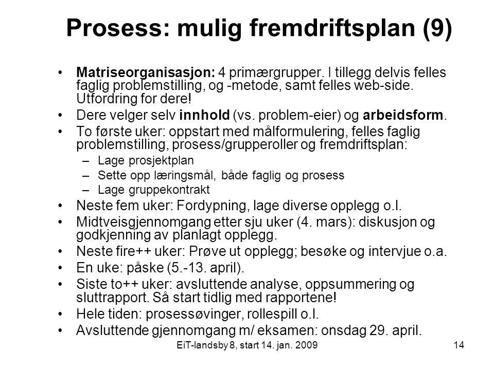 EiT-landsby 8, start 14. jan. 200914 Prosess: mulig fremdriftsplan (9) Matriseorganisasjon: 4 primærgrupper. I tillegg delvis felles faglig problemsti
