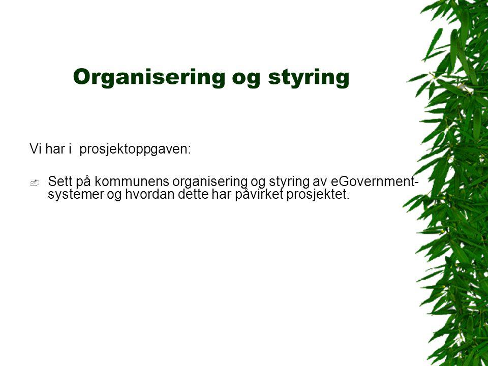 Organisering og styring Vi har i prosjektoppgaven:  Sett på kommunens organisering og styring av eGovernment- systemer og hvordan dette har påvirket prosjektet.