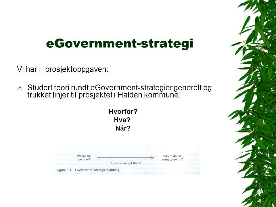 eGovernment-strategi Vi har i prosjektoppgaven:  Studert teori rundt eGovernment-strategier generelt og trukket linjer til prosjektet i Halden kommune.