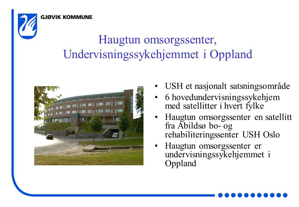 USH et nasjonalt satsningsområde 6 hovedundervisningssykehjem med satellitter i hvert fylke Haugtun omsorgssenter en satellitt fra Abildsø bo- og rehabiliteringssenter USH Oslo Haugtun omsorgssenter er undervisningssykehjemmet i Oppland