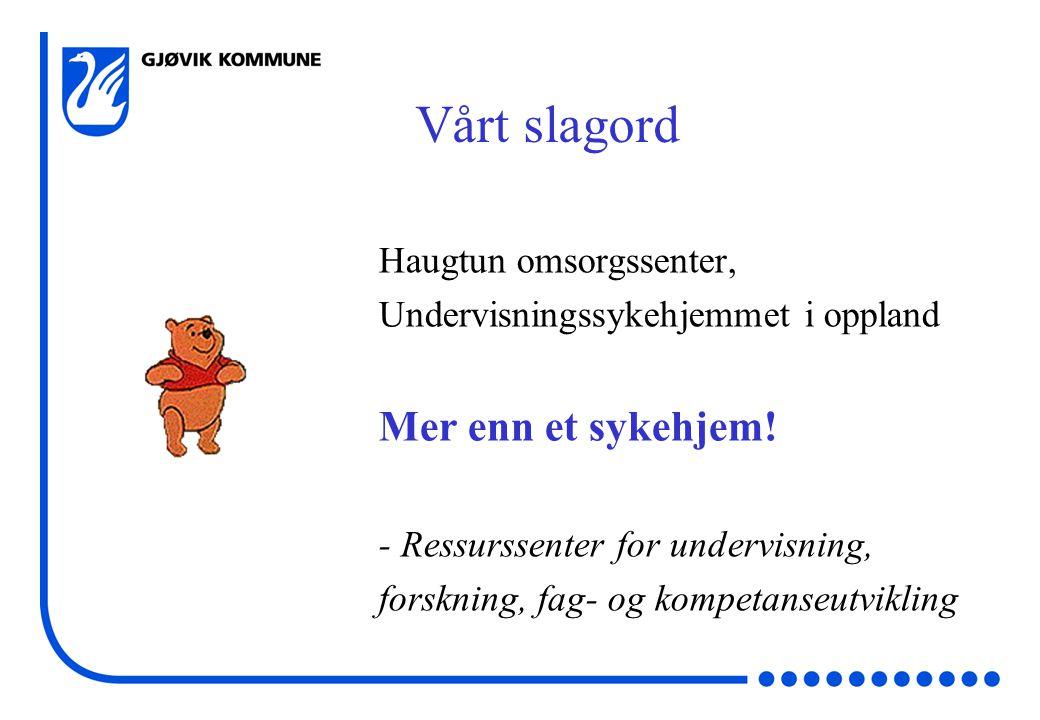 Vårt slagord Haugtun omsorgssenter, Undervisningssykehjemmet i oppland Mer enn et sykehjem.