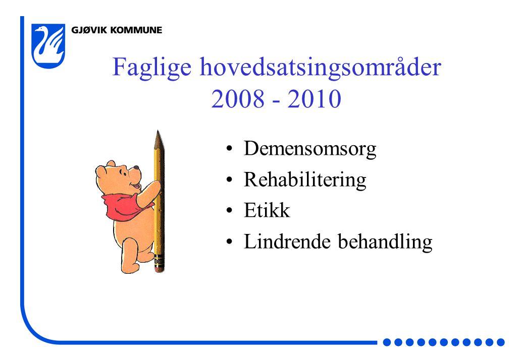 Faglige hovedsatsingsområder 2008 - 2010 Demensomsorg Rehabilitering Etikk Lindrende behandling