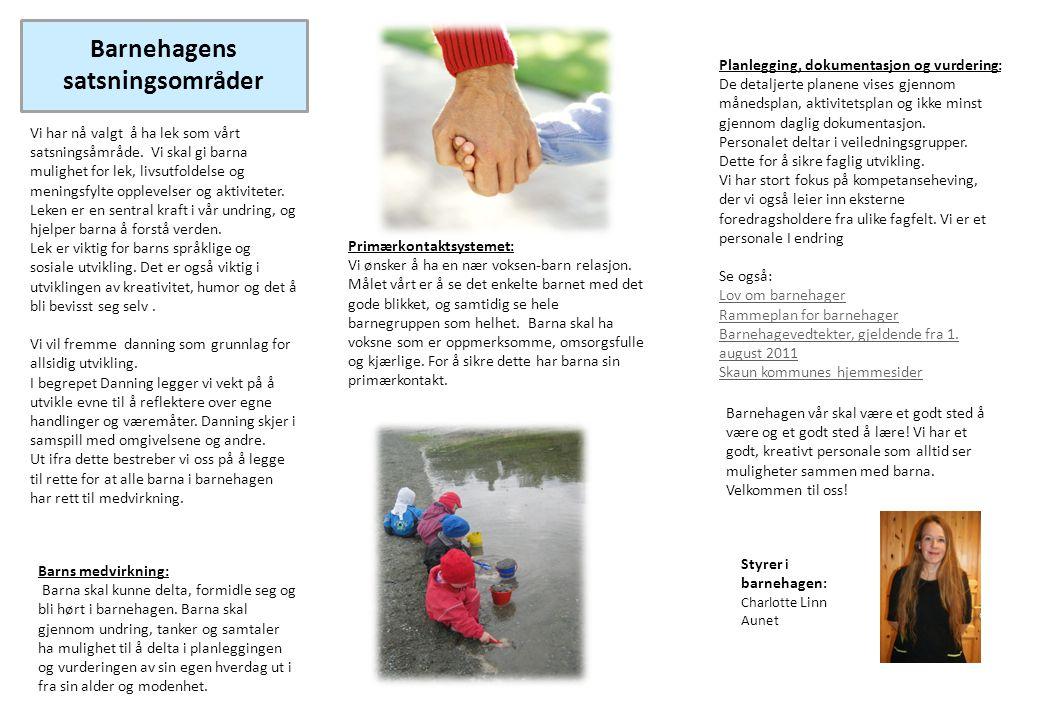 Barnehagens satsningsområder Vi har nå valgt å ha lek som vårt satsningsåmråde. Vi skal gi barna mulighet for lek, livsutfoldelse og meningsfylte oppl