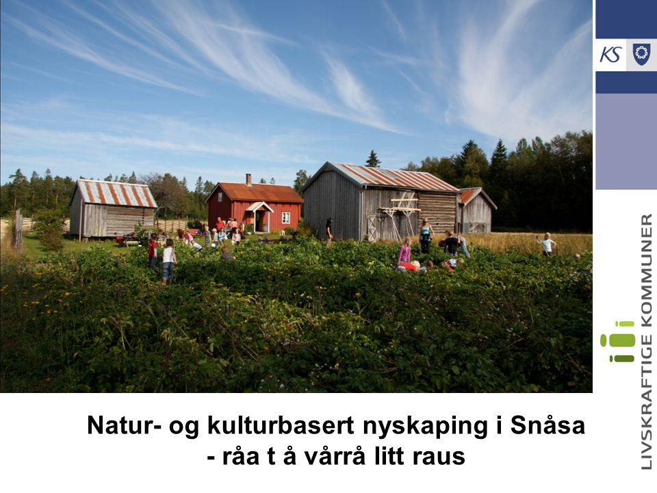 Natur- og kulturbasert nyskaping i Snåsa - råa t å vårrå litt raus