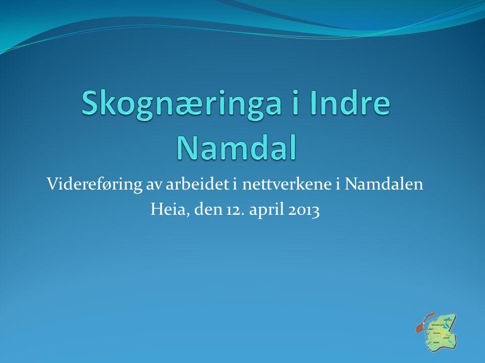 Videreføring av arbeidet i nettverkene i Namdalen Heia, den 12. april 2013