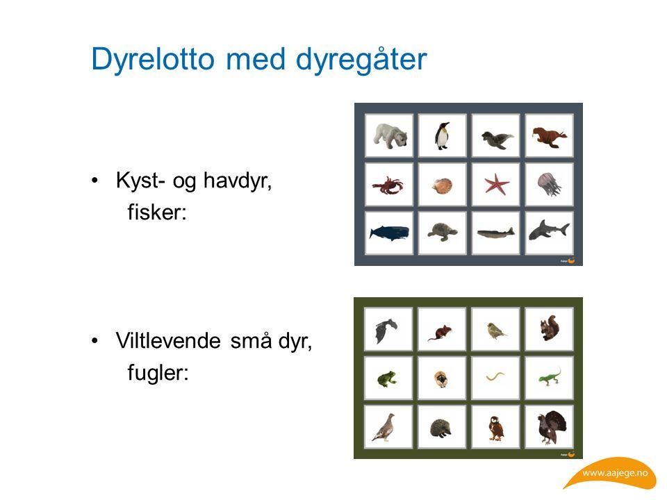 Dyrelotto med dyregåter Kyst- og havdyr, fisker: Viltlevende små dyr, fugler:
