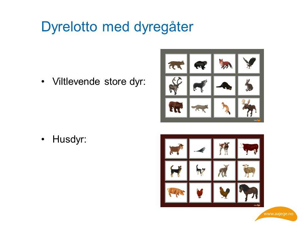 Dyrelotto med dyregåter Viltlevende store dyr: Husdyr:
