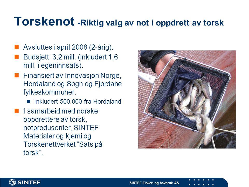 SINTEF Fiskeri og havbruk AS Torskenot -Mål Redusere rømming av torsk  Økt lønnsomhet og redusert miljøpåvirkning Bygge kunnskap som kan bidra til å redusere rømming av torsk.