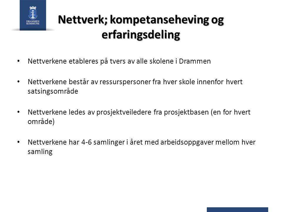 Nettverk; kompetanseheving og erfaringsdeling Nettverkene etableres på tvers av alle skolene i Drammen Nettverkene består av ressurspersoner fra hver skole innenfor hvert satsingsområde Nettverkene ledes av prosjektveiledere fra prosjektbasen (en for hvert område) Nettverkene har 4-6 samlinger i året med arbeidsoppgaver mellom hver samling