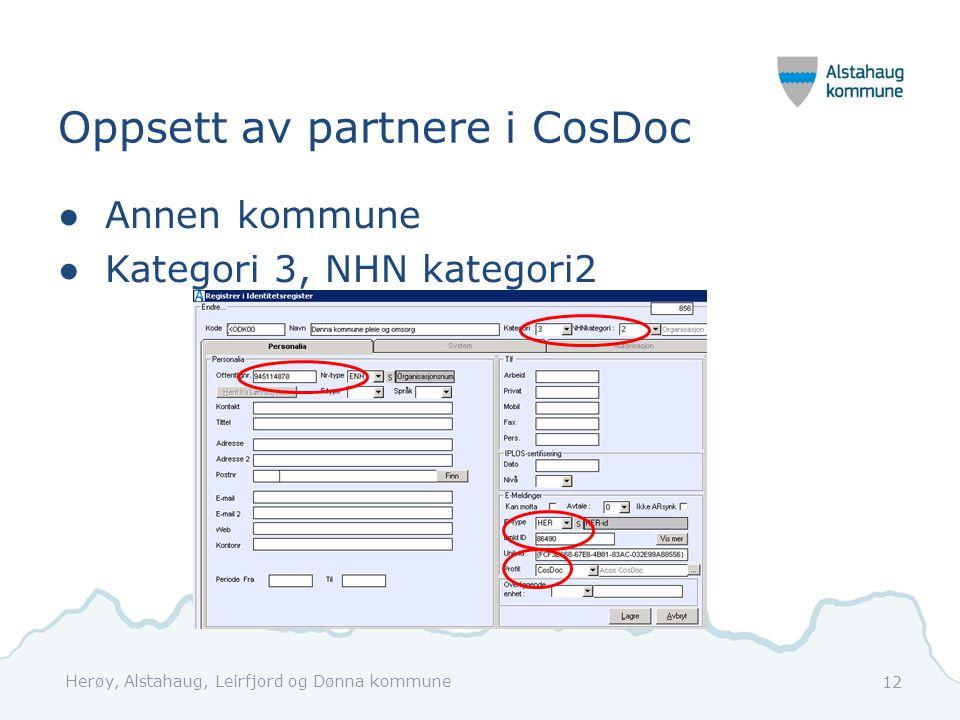 Oppsett av partnere i CosDoc ●Annen kommune ●Kategori 3, NHN kategori2 Herøy, Alstahaug, Leirfjord og Dønna kommune 12