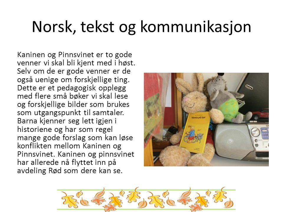 Norsk, tekst og kommunikasjon Kaninen og Pinnsvinet er to gode venner vi skal bli kjent med i høst. Selv om de er gode venner er de også uenige om for