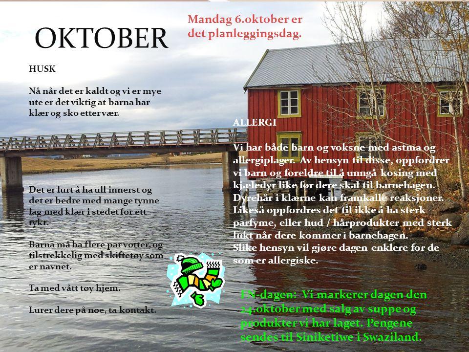 OKTOBER FN-dagen: Vi markerer dagen den 24.oktober med salg av suppe og produkter vi har laget. Pengene sendes til Siniketiwe i Swaziland. HUSK Nå når