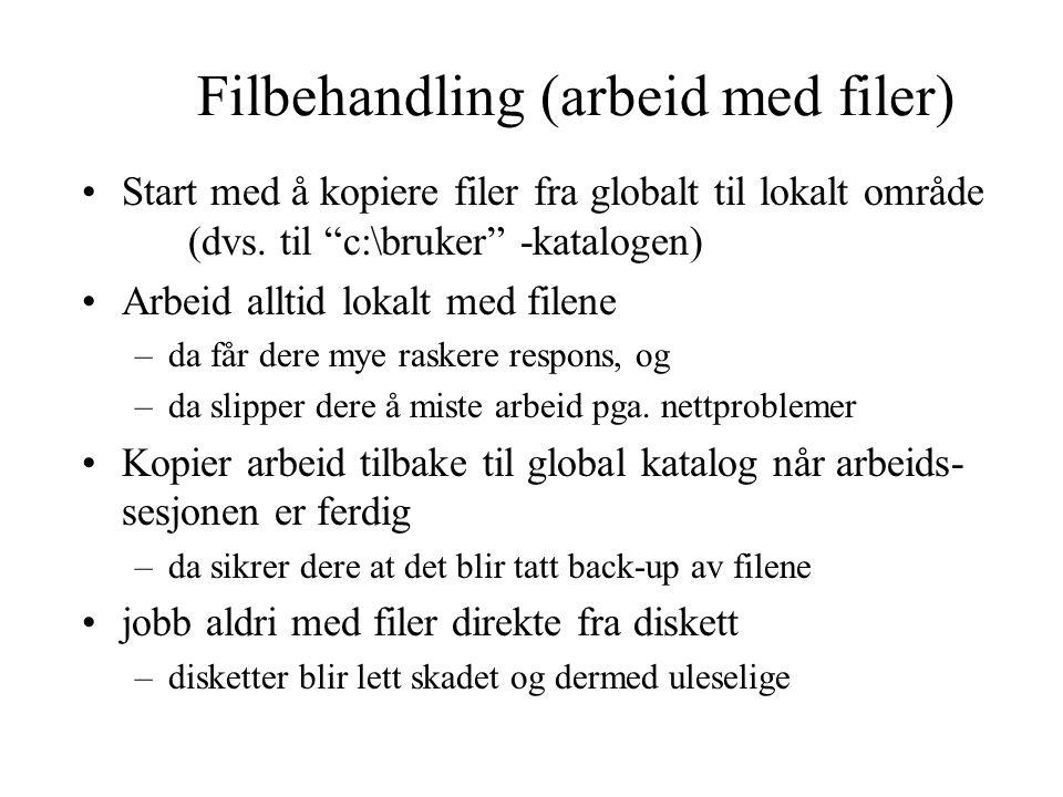 Filbehandling (arbeid med filer) Start med å kopiere filer fra globalt til lokalt område (dvs.