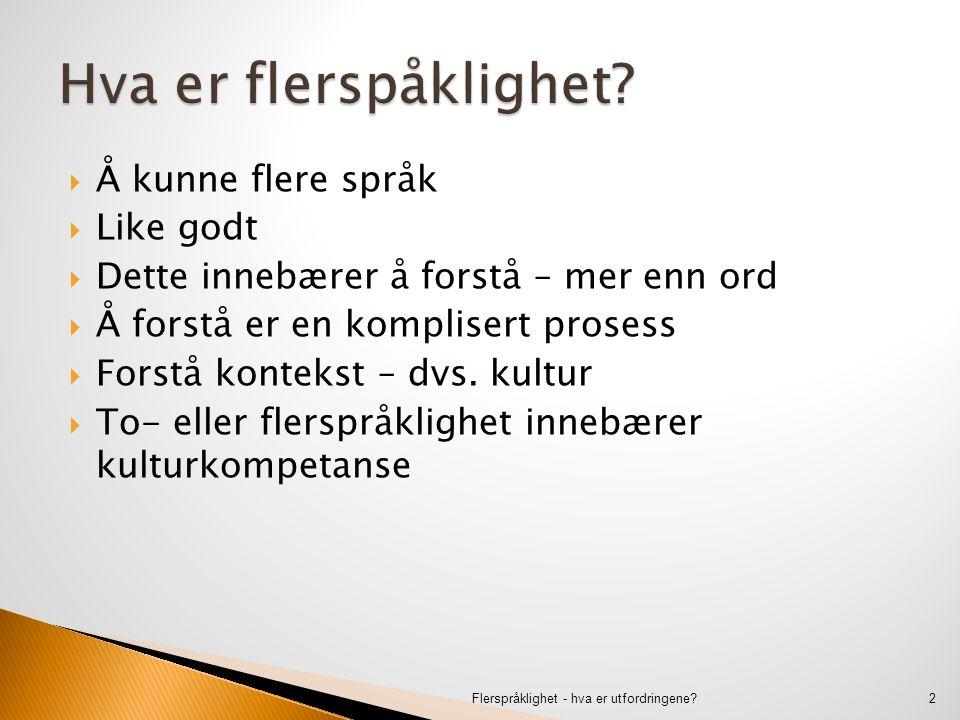  Det er ikke å kunne et eller flere andre språk og så litt norsk  Det er ikke å kunne norsk og så litt av et eller flere andre språk  Det er ikke å ha visse språklige ferdigheter uten tilhørende kulturkompetanse Flerspråklighet - hva er utfordringene?3