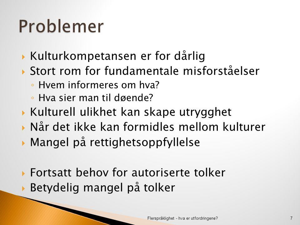  Forskjellen på dagligspråk og fagspråk  Fagkompetanse – og fagspråk – kan være i orden ◦ På norsk.