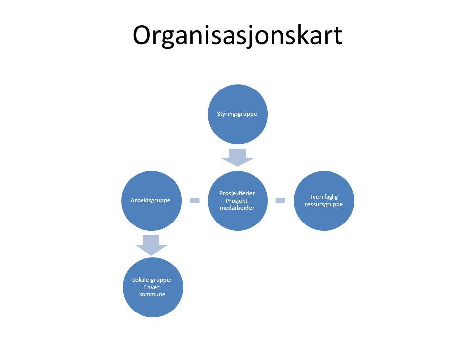 Organisasjonskart Prosjektleder Prosjekt- medarbeider Styringsgruppe Tverrfaglig ressursgruppe Lokale grupper i hver kommune Arbeidsgruppe