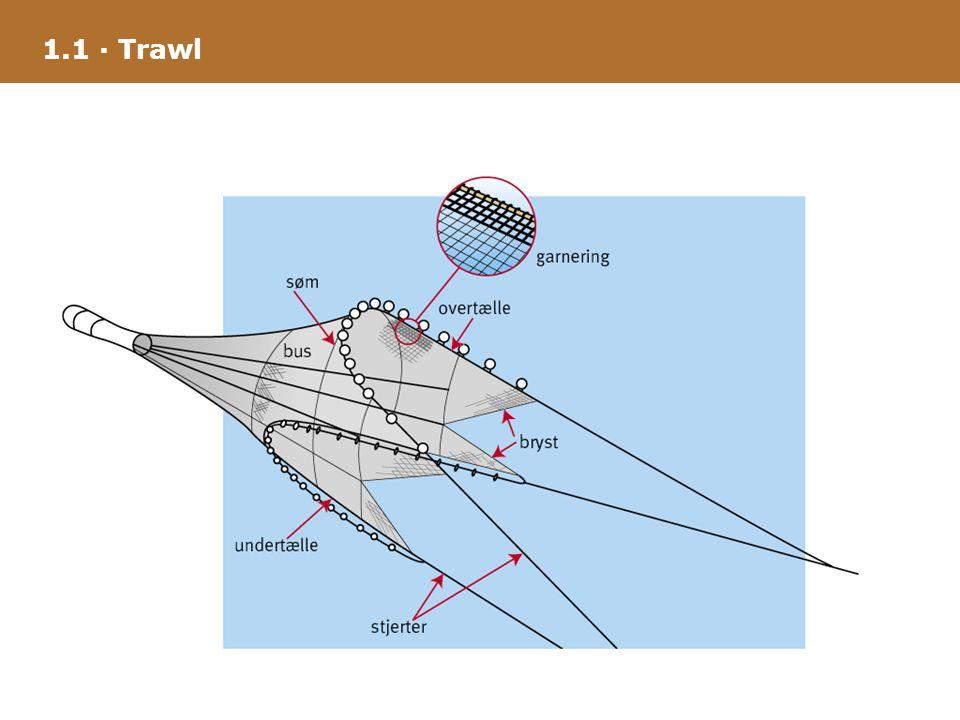 1.1 · Trawl