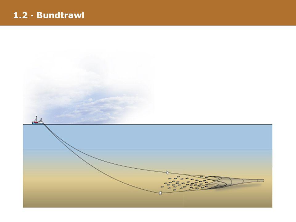 1.2 · Bundtrawl