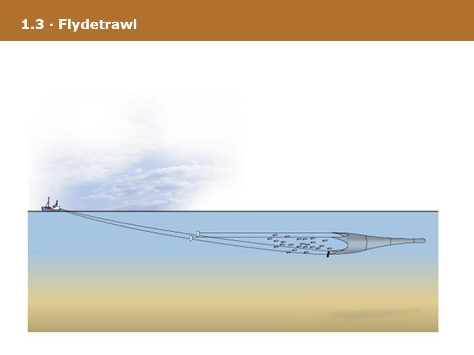 1.3 · Flydetrawl