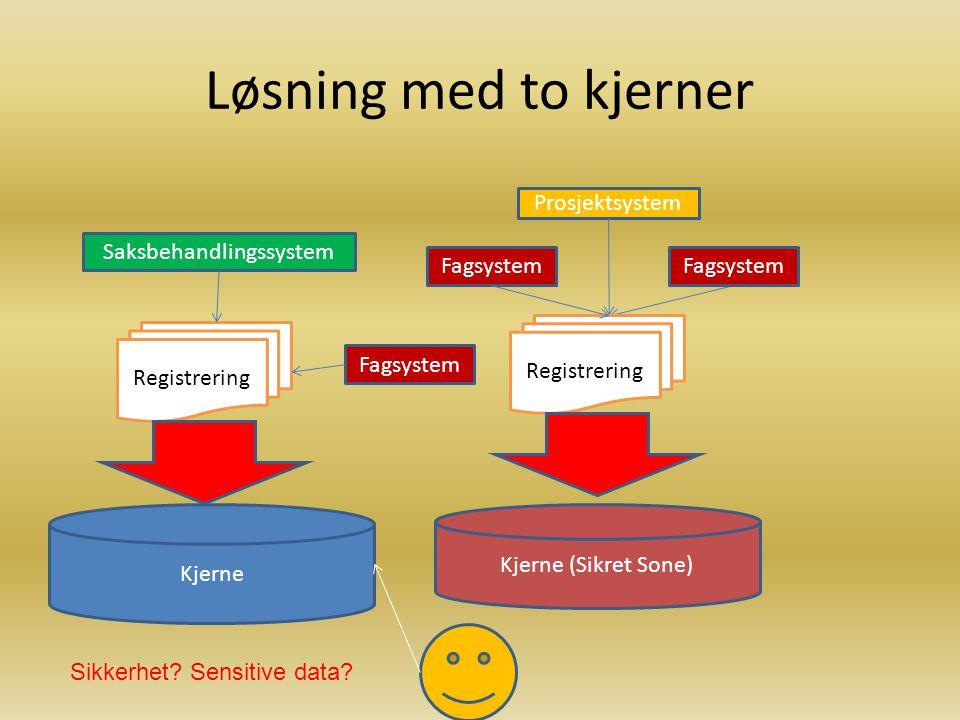 Eksempel på enkjerneløsning Fagsystem Prosjektsystem Saksbehandlingssystem Kjerne Registrering Innsyn Sikkerhet.