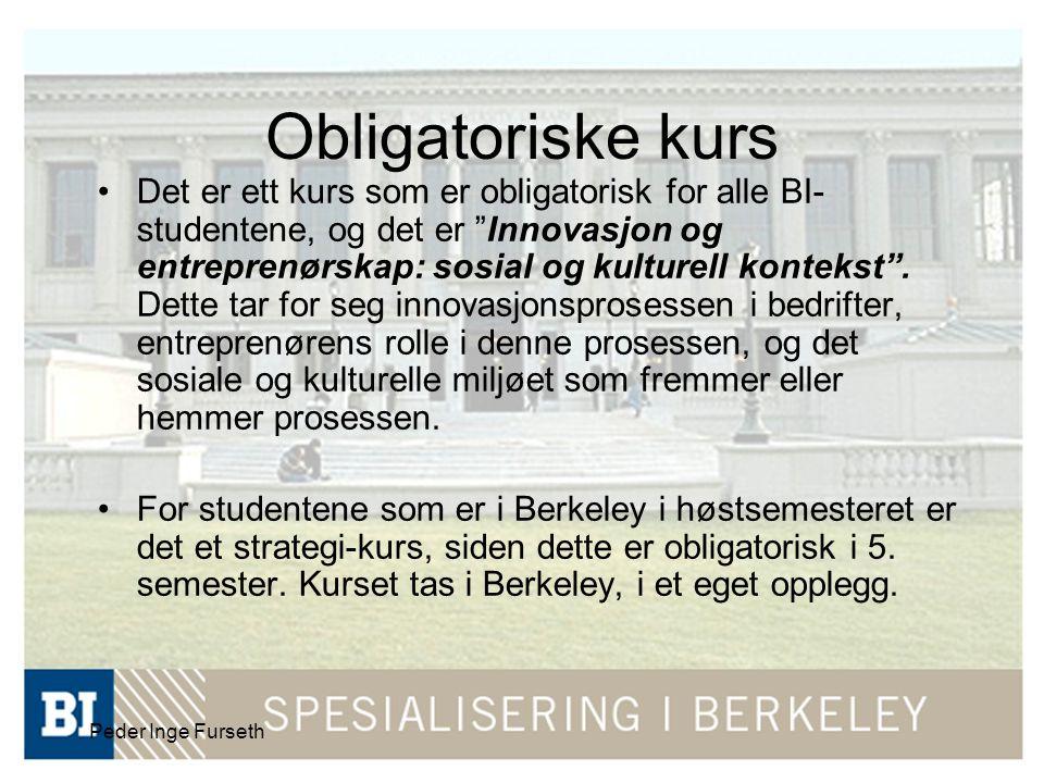 Peder Inge Furseth Det er ett kurs som er obligatorisk for alle BI- studentene, og det er Innovasjon og entreprenørskap: sosial og kulturell kontekst .
