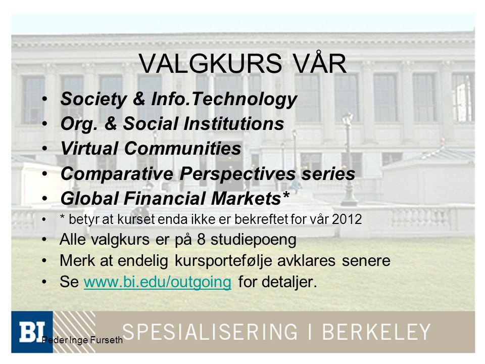 Peder Inge Furseth VALGKURS VÅR Society & Info.Technology Org. & Social Institutions Virtual Communities Comparative Perspectives series Global Financ
