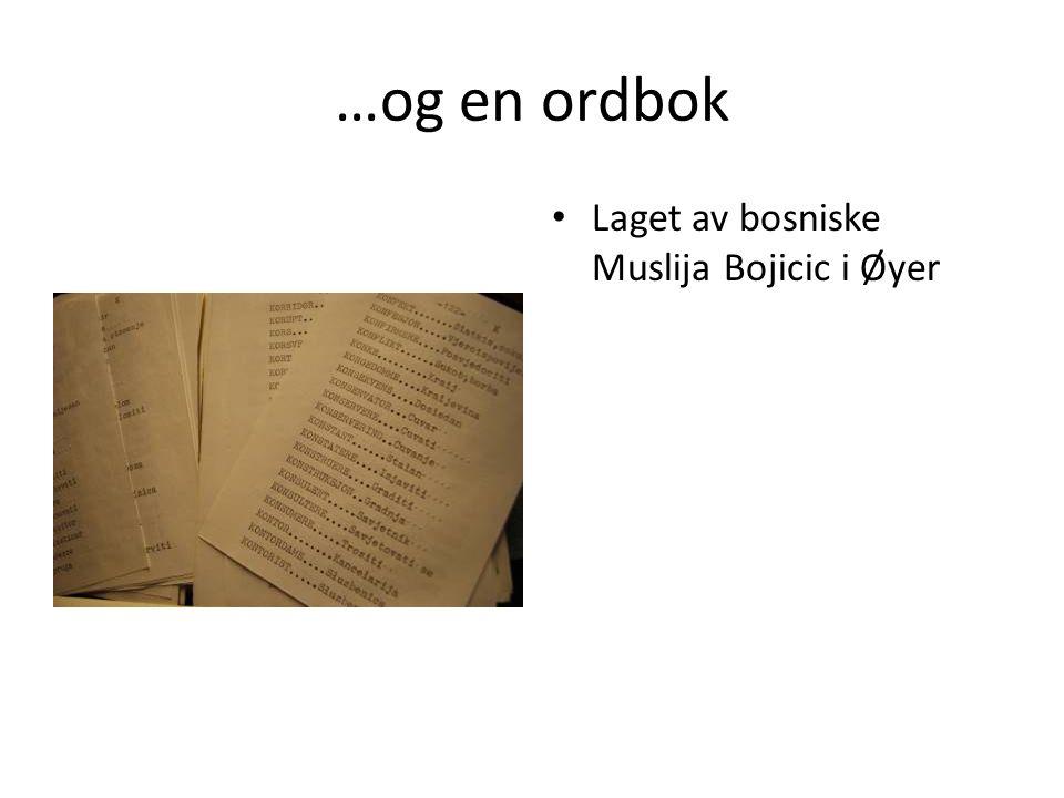 …og en ordbok Laget av bosniske Muslija Bojicic i Øyer