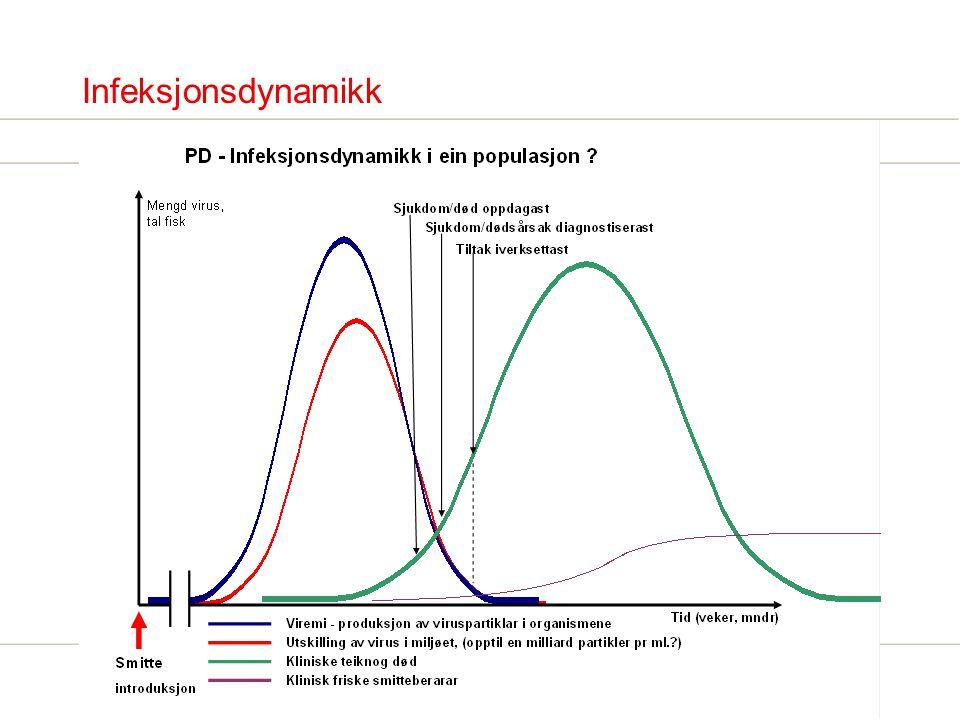 Risikofaktorer for smitte (introduksjon) Faktorer som i epidemiologiske studier har gitt økt risiko for PD : -Flytting/transport av levende fisk, -Bruk av felles utstyr, (landbase), -Lokalitet med PD-diagnostisert innen 5 km, -PD-diagnose på lokalitet innen samme selskap/konsesjon.