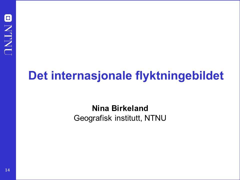 14 Det internasjonale flyktningebildet Nina Birkeland Geografisk institutt, NTNU