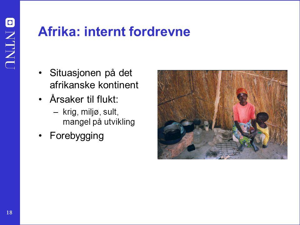 18 Afrika: internt fordrevne Situasjonen på det afrikanske kontinent Årsaker til flukt: –krig, miljø, sult, mangel på utvikling Forebygging