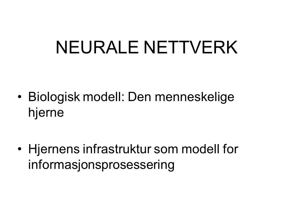 NEURALE NETTVERK Biologisk modell: Den menneskelige hjerne Hjernens infrastruktur som modell for informasjonsprosessering
