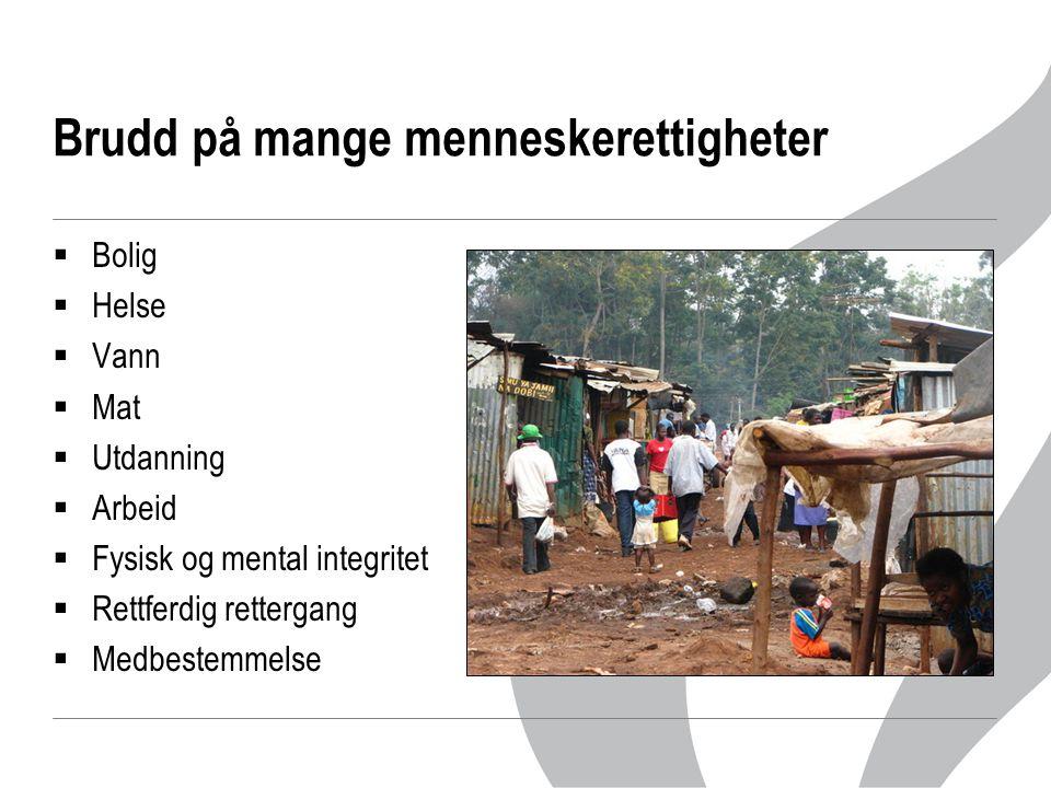 Brudd på mange menneskerettigheter  Bolig  Helse  Vann  Mat  Utdanning  Arbeid  Fysisk og mental integritet  Rettferdig rettergang  Medbestem