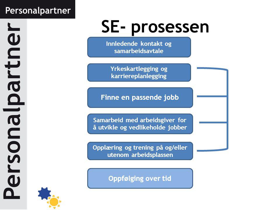 SE- prosessen Innledende kontakt og samarbeidsavtale Yrkeskartlegging og karriereplanlegging Finne en passende jobb Samarbeid med arbeidsgiver for å u