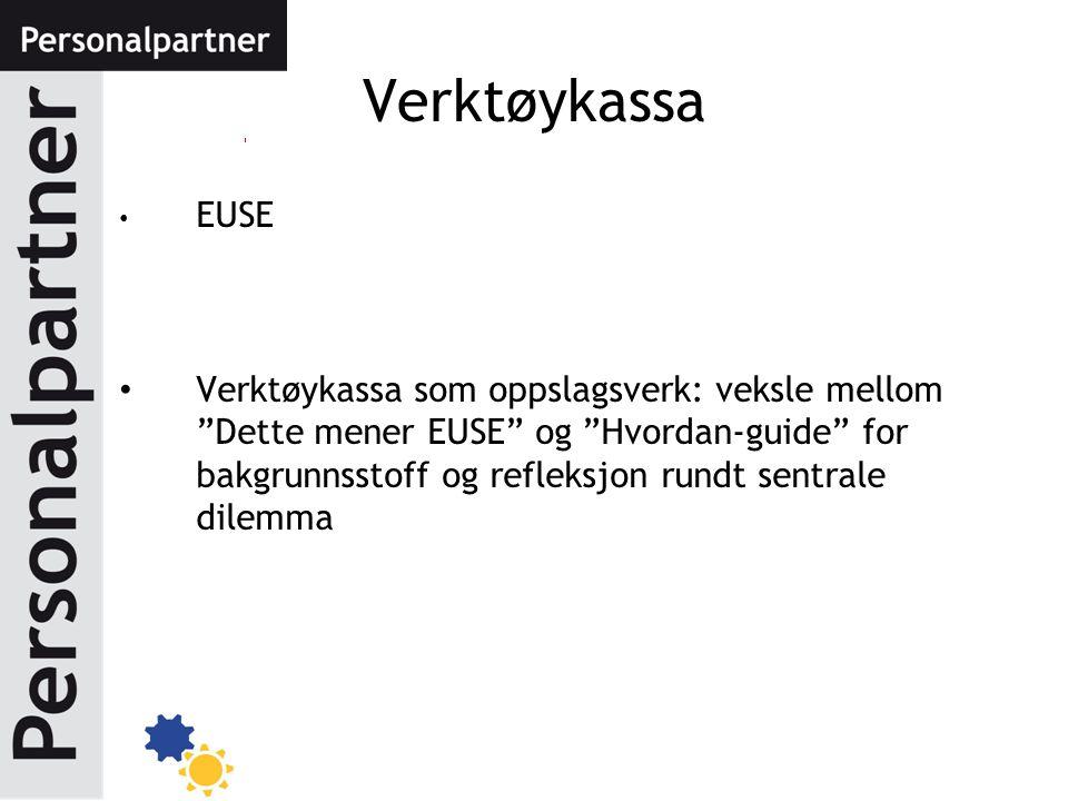 """EUSE Verktøykassa som oppslagsverk: veksle mellom """"Dette mener EUSE"""" og """"Hvordan-guide"""" for bakgrunnsstoff og refleksjon rundt sentrale dilemma Verktø"""