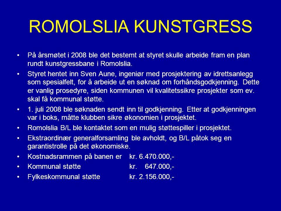 På årsmøtet i 2008 ble det bestemt at styret skulle arbeide fram en plan rundt kunstgressbane i Romolslia.
