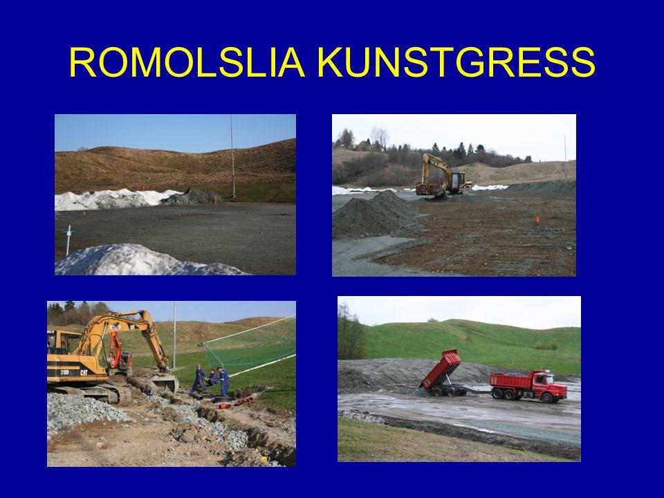 ROMOLSLIA KUNSTGRESS
