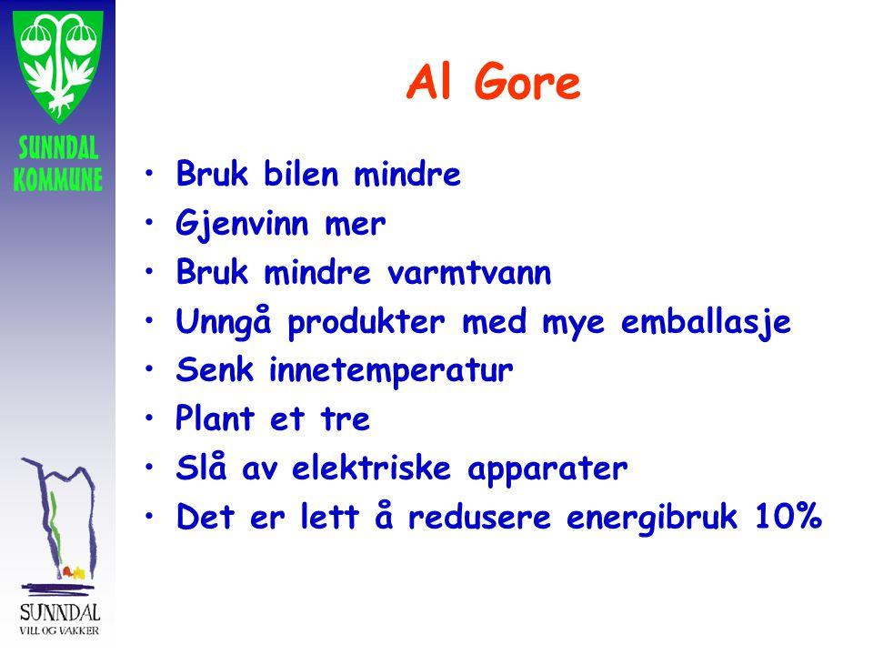 Al Gore Bruk bilen mindre Gjenvinn mer Bruk mindre varmtvann Unngå produkter med mye emballasje Senk innetemperatur Plant et tre Slå av elektriske apparater Det er lett å redusere energibruk 10%