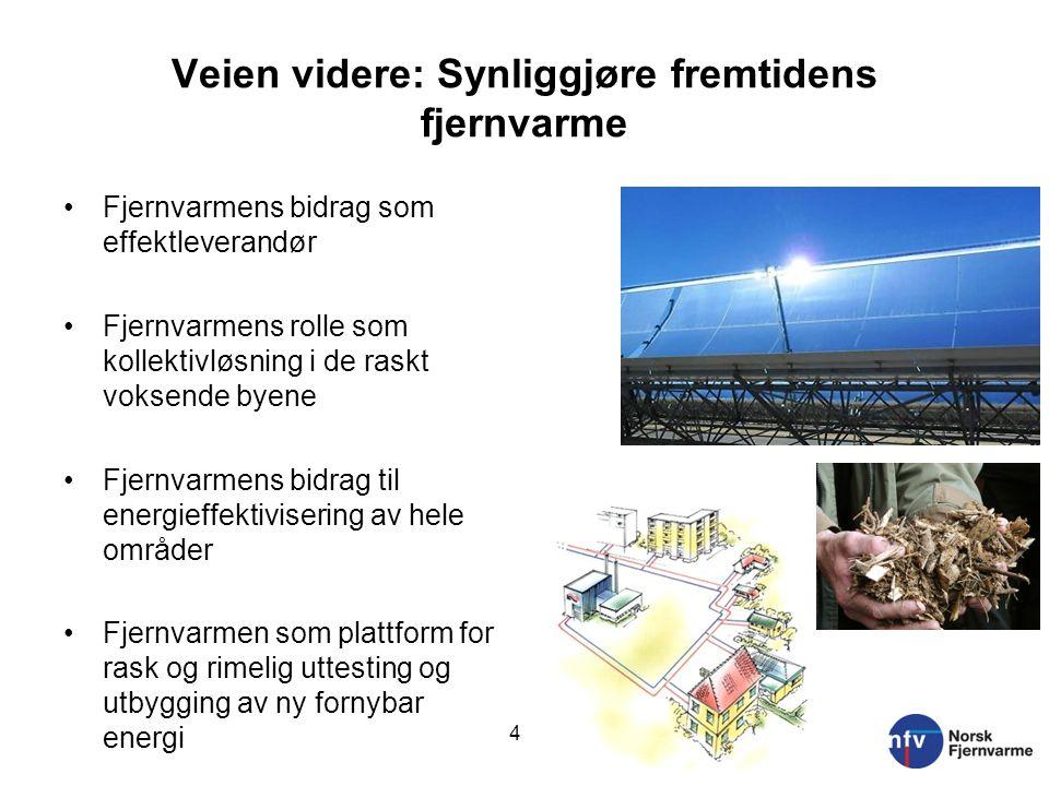 Hva gjør Norsk Fjernvarme.