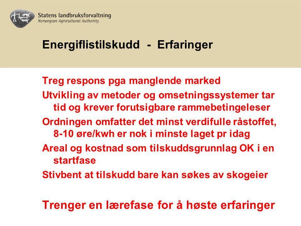 Energiflistilskudd - Hva nå.