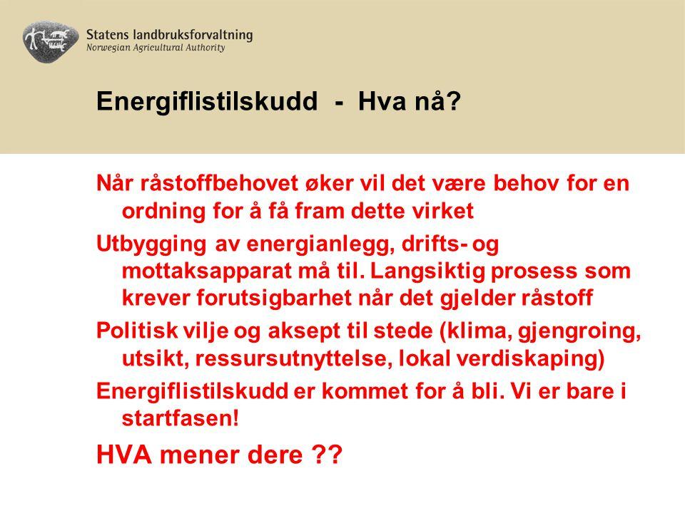 Energiflistilskudd - Hva nå? Når råstoffbehovet øker vil det være behov for en ordning for å få fram dette virket Utbygging av energianlegg, drifts- o