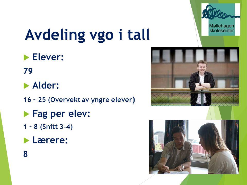 Avdeling vgo i tall  Elever: 79  Alder: 16 – 25 (Overvekt av yngre elever )  Fag per elev: 1 – 8 (Snitt 3-4)  Lærere: 8