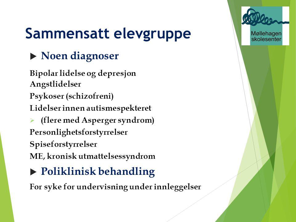 Sammensatt elevgruppe  Noen diagnoser Bipolar lidelse og depresjon Angstlidelser Psykoser (schizofreni) Lidelser innen autismespekteret  (flere med